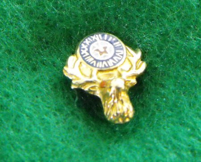 Elks Club Pin